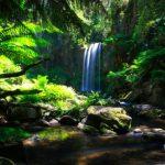 Hopetoun Waterfalls Victoria Australia