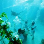 A Unique Underwater Wedding in Bora Bora