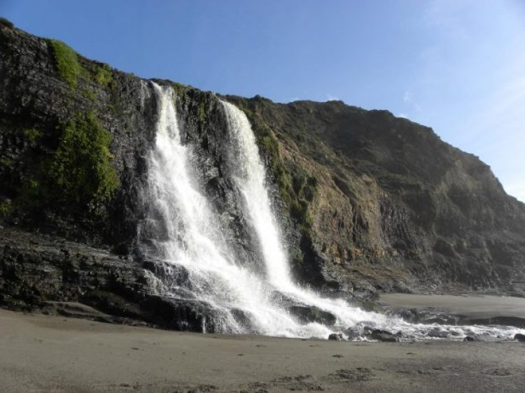 Alamere Falls itself, dropping 40 feet down onto the beach.