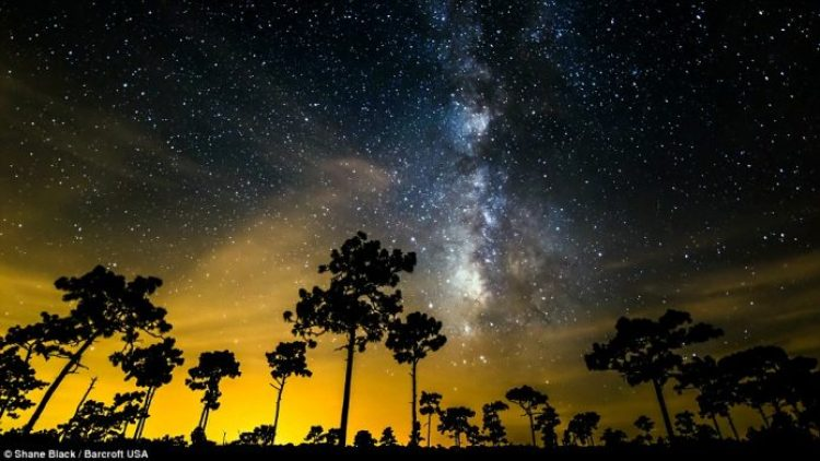 A crystal clear Florida night. Mr Black funded his trip by teaching photography workshops in a few select cities along the way