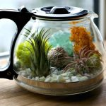 DIY Coffee Pot Terrarium