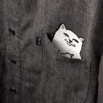 A Lovely Pocket Cat T-Shirts with a Hidden Surprise
