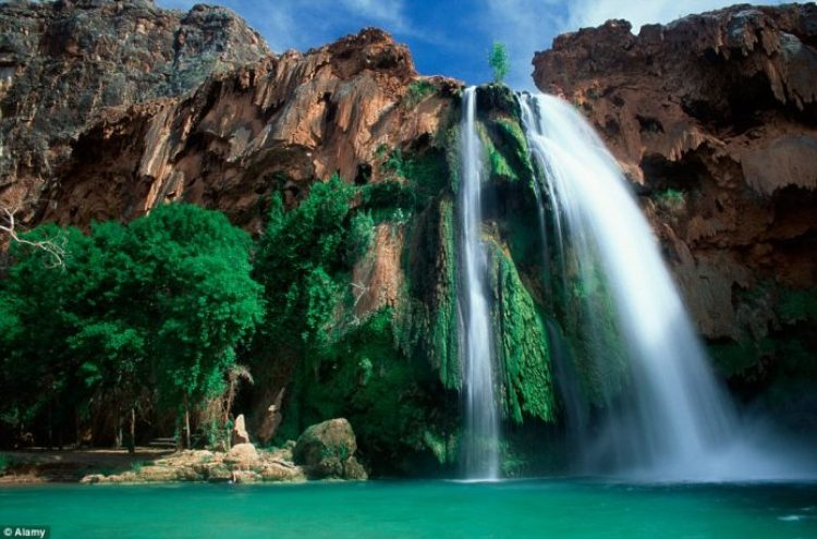 The Havasu Falls, located within Havasupai tribal lands, consists of cascading waters down the 100-ft vertical cliff into a large pool
