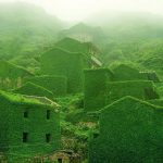 An Abandoned Fishing Village in Gouqi Island Slowly Taken Over by Nature