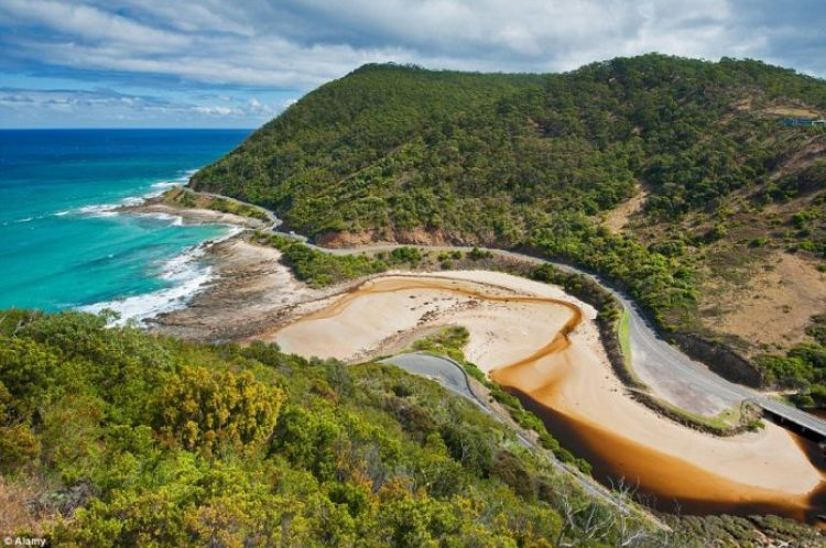 Australia is home to a range of vast road expanse combined with dramatic scenery, making for an incredible road trip, especially along The Great Ocean Road, winding its way round the coastline