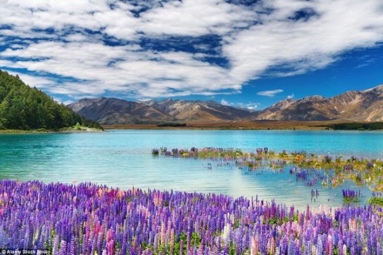 Lake Tekapo is the second-largest of three roughly parallel lakes running along the northern edge of the Mackenzie Basin