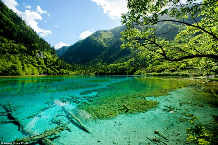 The stunning Unesco World Heritage Site of Jiǔzhàigōu National Park is visited by more than two million people every year who are lured by its turquoise lakes, cascading waterfalls and its deep green trees