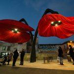 Gigantic Urban Flowers Bloom When Pedestrians Pass By Under Them