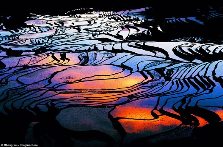 Mosaic beauty The terraced rice fields in Yuanyang County become flooded paddies from December to April and create pools that resemble broken mirrors.