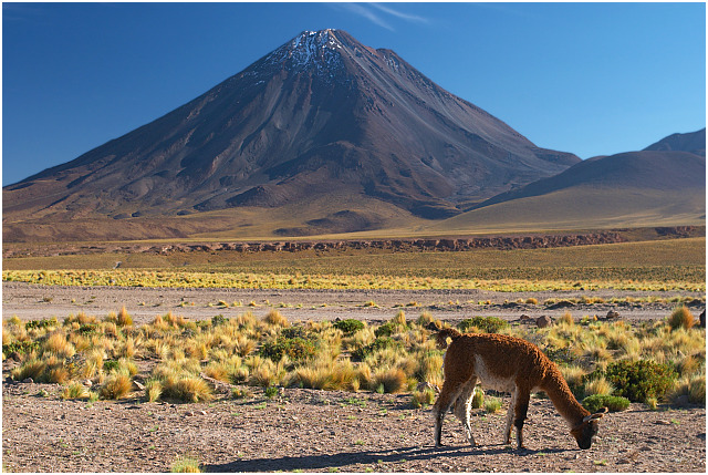 Licancabur as seen from Paso de Jama, Chile (March 2005). The early morning light gave this scenery very warm and intense colors.