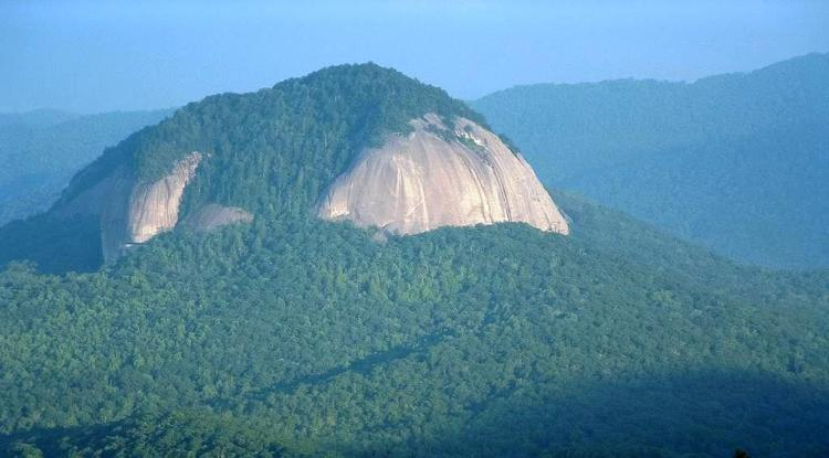Looking Glass Rock as seen from the Blue Ridge Parkway in early summer.