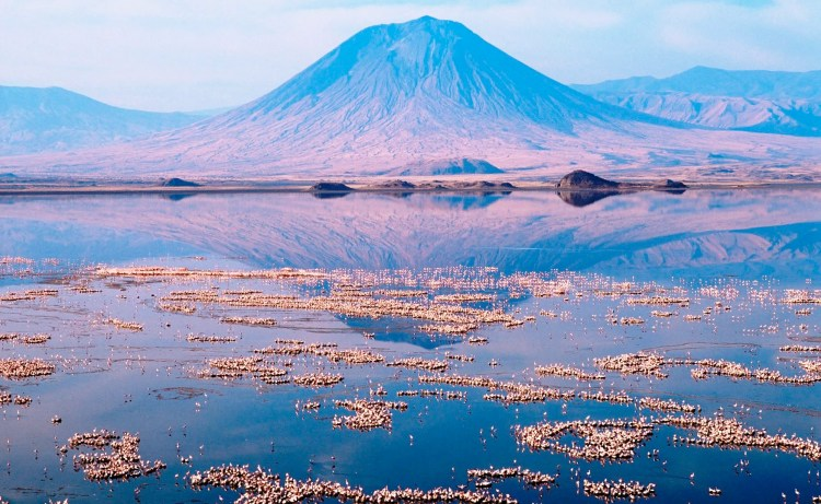 The Lake temperature is falling above 40 °C (104 °F). Due to its exclusive biodiversity Tanzania has named The Lake Natron Basin to the Ramsar list of Wetlands of International significance.