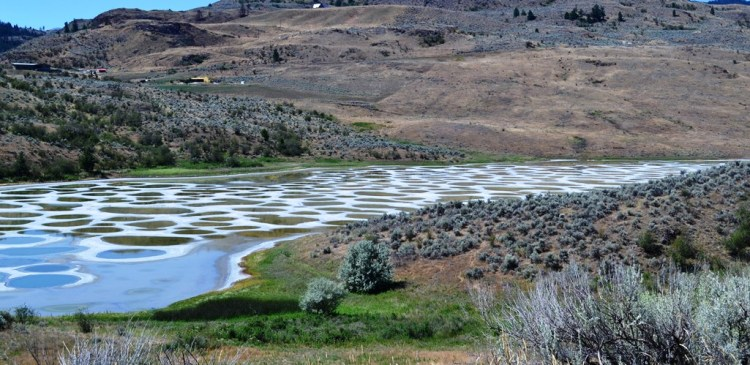 The ameoba-shaped Spotted Lake, changes colors throughout the year and during the summer time divides itself into white, green, blue and yellow pools.