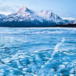 Frozen Bubbles beneath the Surface of Abraham Lake in Canada
