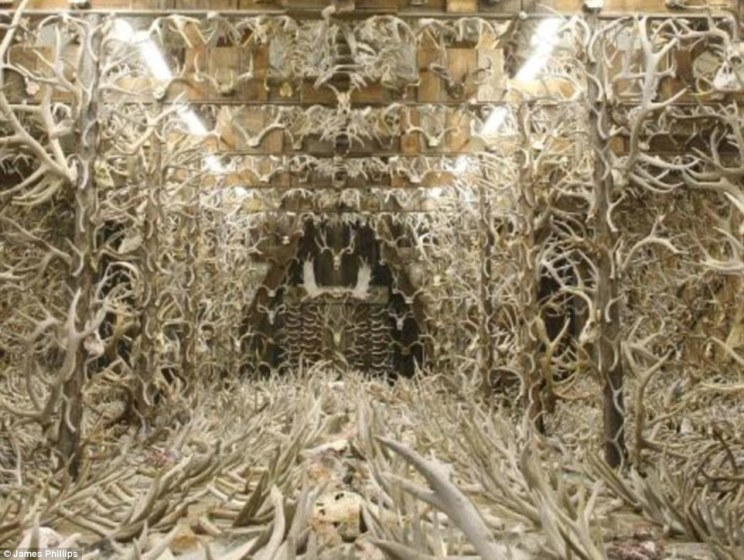 Hidden inside an ordinary-looking shed in Montana is the result of one man's obsession - 15,000 antlers, horns and skulls collected over 60 years