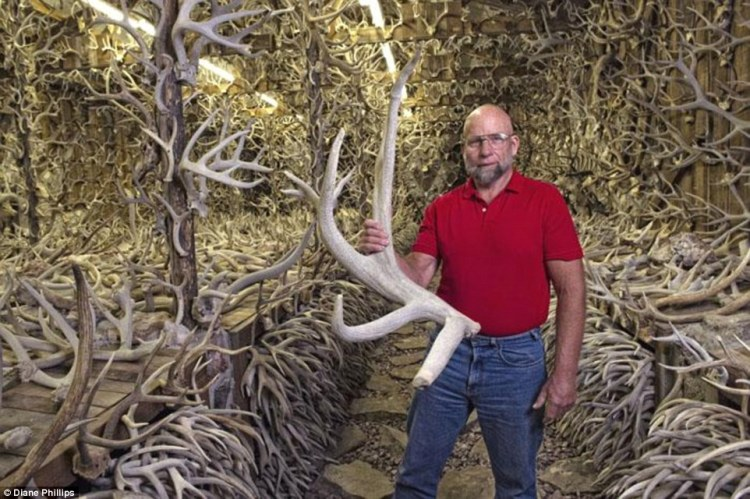 James Phillips, the man behind the bizarre horde, is pictured here holding one of his largest specimens