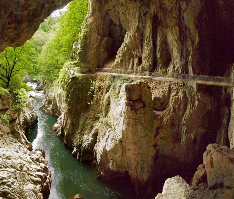 . Škocjan Caves is one of largest known underground canyons in the planet earth, encompasses majestic natural beauty with great aesthetic vales, great microclimatic condition, a special ecosystem has developed.