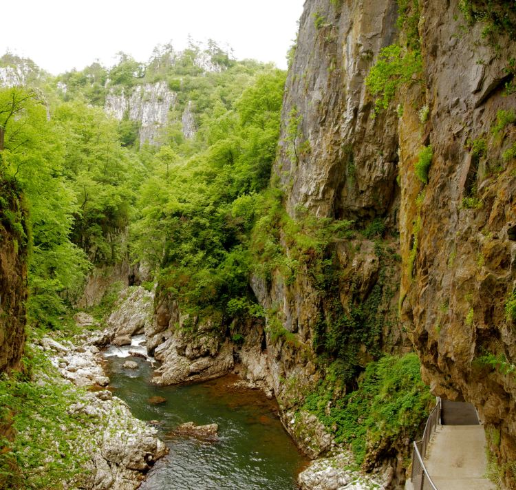 The Reka River disappears underground at Big Collapse Doline into Škocjan Caves, and its 1/3 flow to the Timavo River.