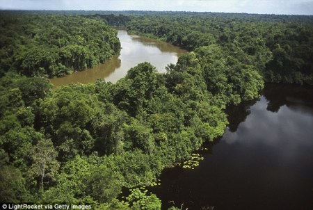 Brazilian police were able to track Anton down as he was heading into the dangerous northern Brazilian state of Amazonas