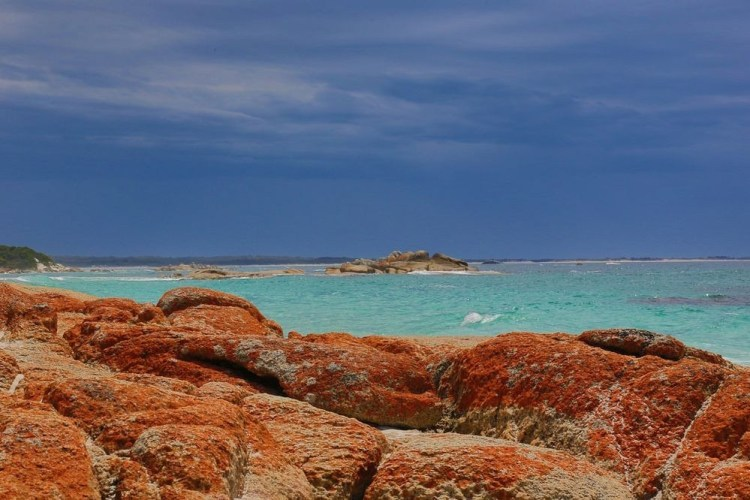 The Bay of Fires is famous for its crystal-clear waters, white sandy beaches and orange lichen-covered granite boulders, the most popular conservation reserves.