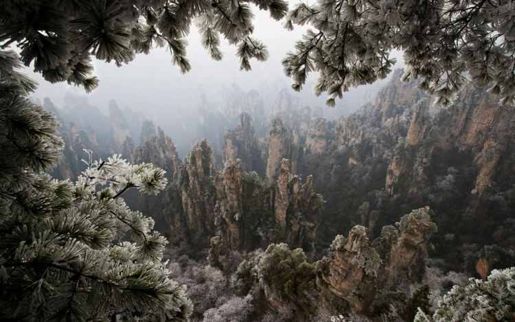 The pillars and valleys are covered in a dense, moist tropical-like forest, which makes the amazing setting of this Chinese National Park complete.