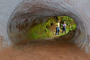 Looking into a large paleoburrow in Brazil. (Courtesy Heinrich Frank)