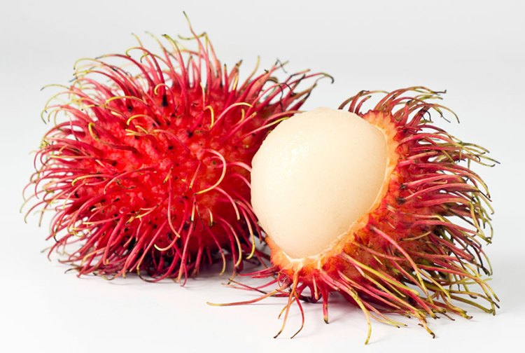 Rambutan taste is very sweet and mildly acidic like grapes. This delicious fruit is full of vitamin C and iron