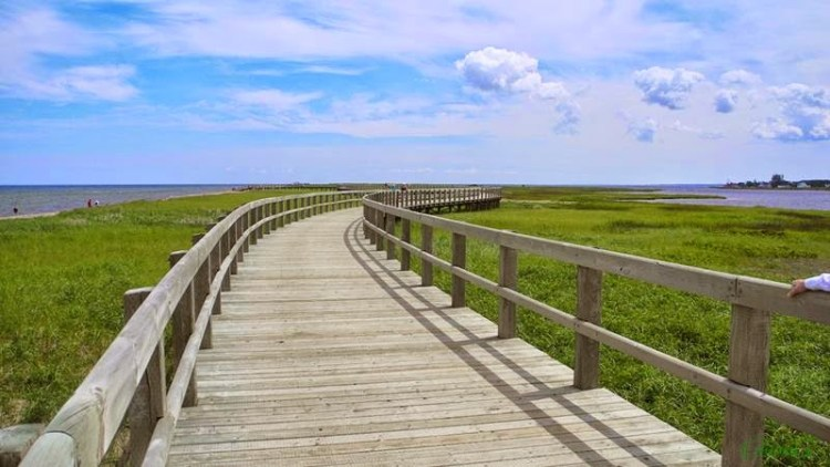 The boardwalk is wheelchair, accessible with ramps to the beach and inner bay, and as such, this earth-cache is wheelchair friendly. Image credit photo fiddler
