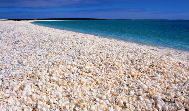 This beautiful snow-white beach is made up of millions of tiny shells transforms into a palette of the most intense greens and blues - and the water is very salty (hyper-saline), making it easy to float for those who aren't solid swimmers.