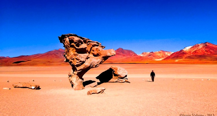Stone Trees Of Bolivia Charismatic Planet
