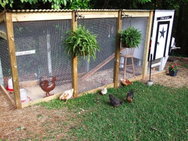 The French-Themed Chicken Coop