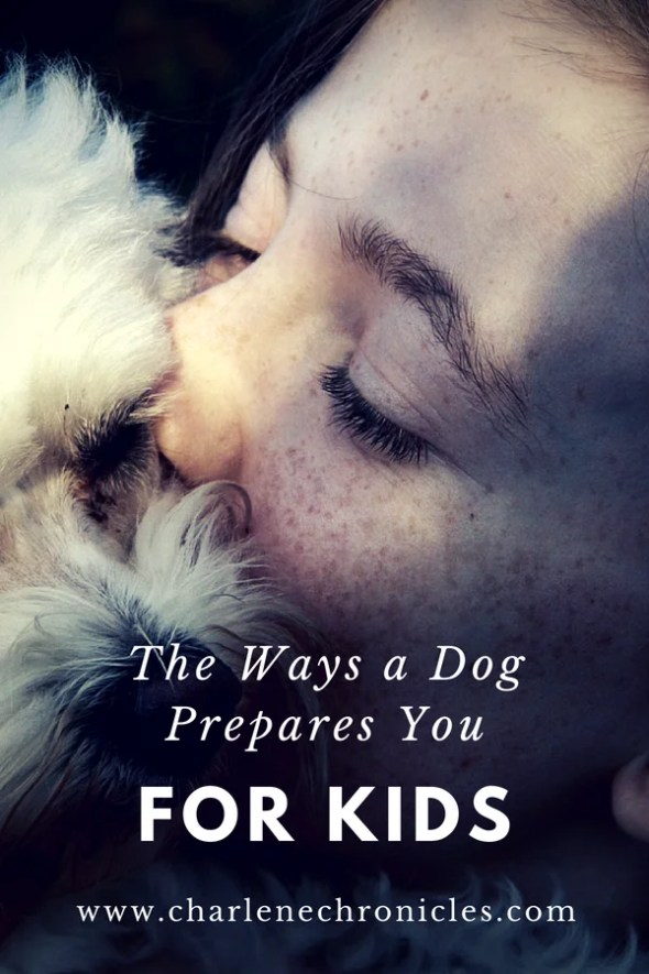 the ways a dog prepares you for kids by CharleneChronicles.com