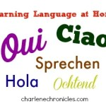 Learning a Language in Your 40s