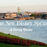 The New Disney Springs