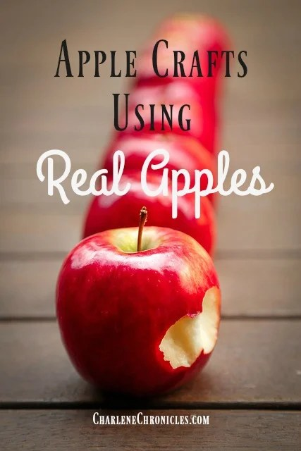 apple-crafts-real-apples