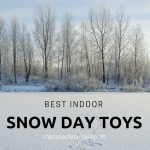 Fun Indoor Toys for a Snow Day