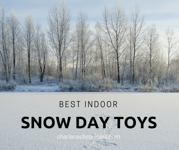 indoor snow day toys