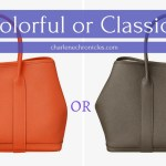 The Hermes Debate: Pop of Color or Classic?