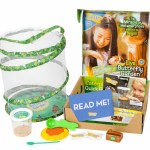 Back to Nature: Educational Butterfly Kits