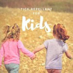 Here is the Best Tick Repellent for Kids Without Deet