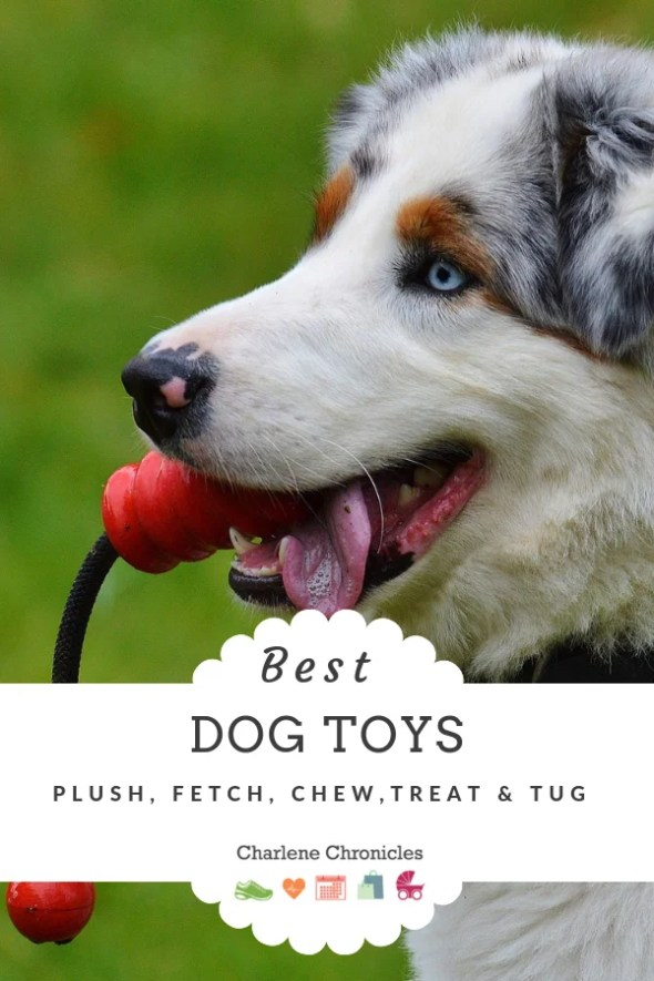 Best dog toys by Charlene Chronicles