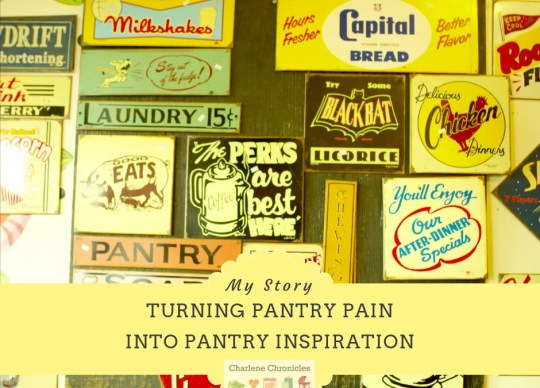 A pantry design idea by charlenechronicles
