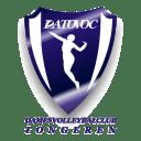 Logo Datavoc Tongeren