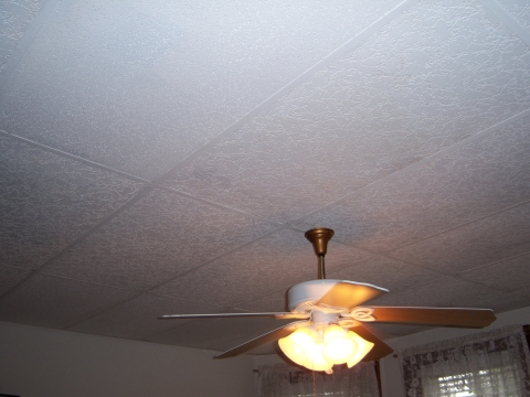 drop-ceiling-living-room.jpg