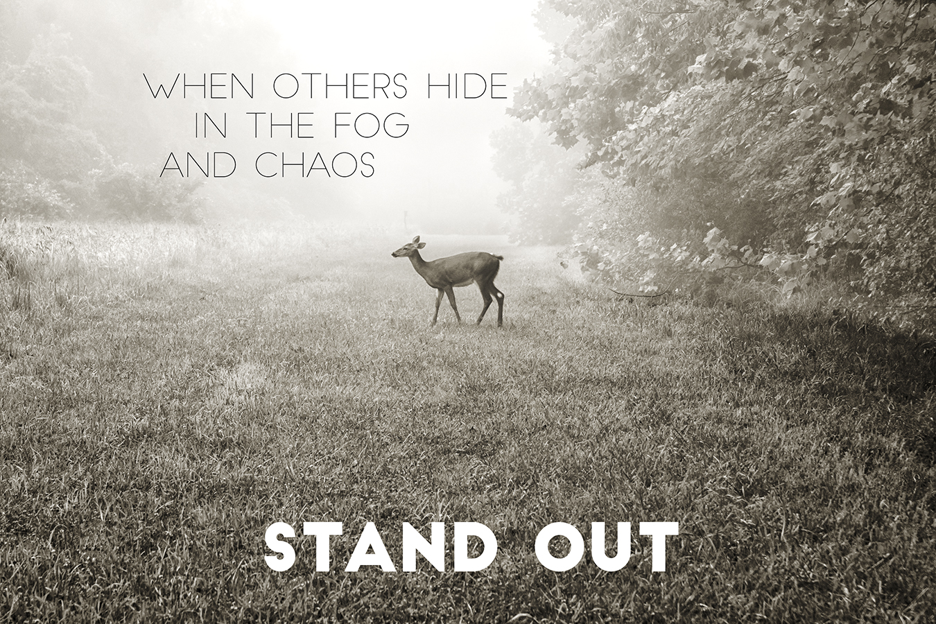 charles i. letbetter - stand out
