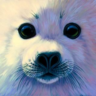 Harp Seal Pup Face