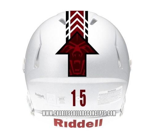 bear up helmet 6