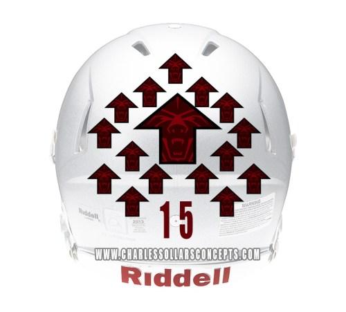 bearup helmet 3
