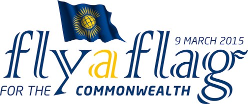 Fly a flag logo