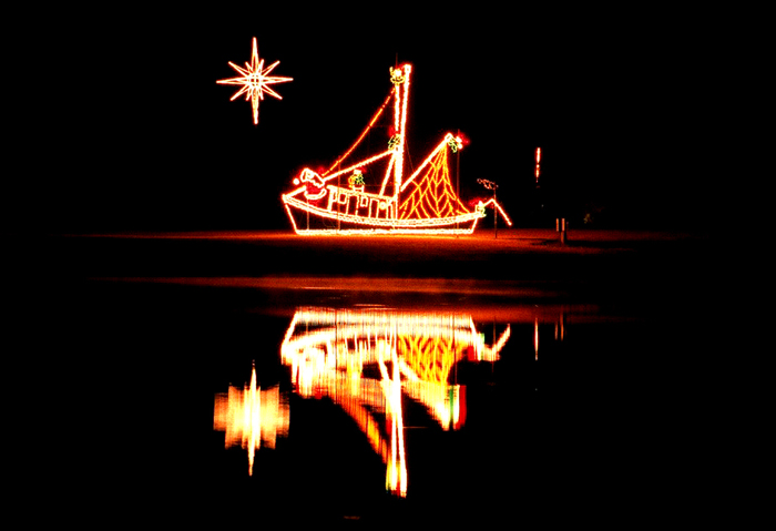 James Island Festival Lights